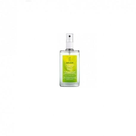 Weleda desodorante de citrus 100ml