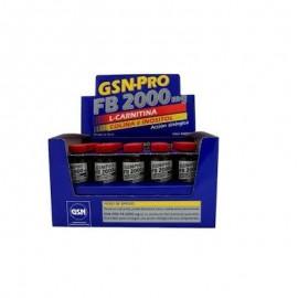 L-carnitina 2000 mg GSN Pro Fb 20 Viales