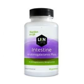INTESTINE ARABINOGALACTANOS PLUS 60 g LKN life