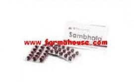 SAMBHALA 600 MG 30 CAPS